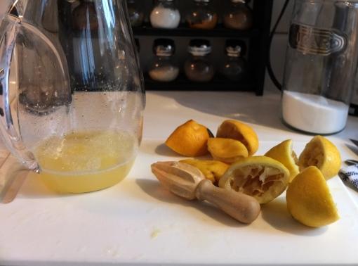 squeeze-lemons