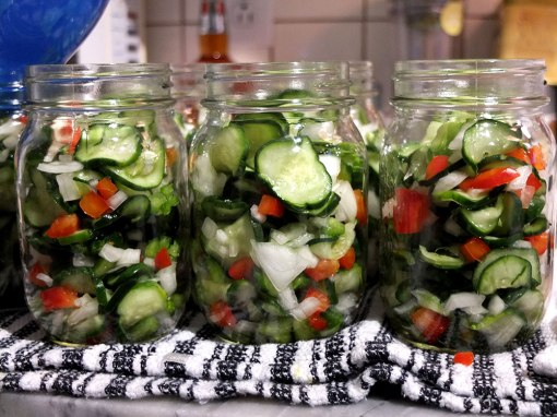 pickles-9